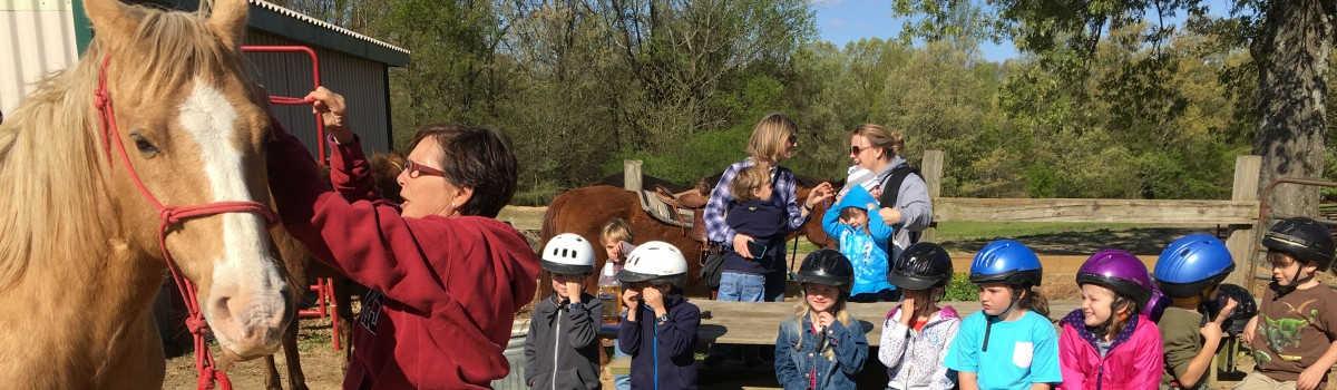 Homeschool Group Western Riding Lessons
